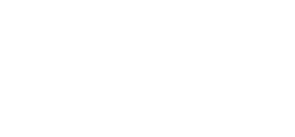 Logo-alternatif-Bigdata&AI-blanc-1